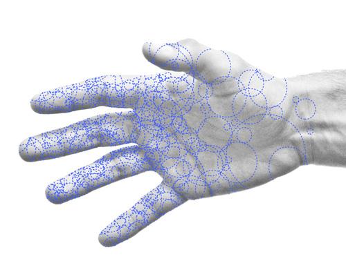 TarrynHandcock100-handsites-diagram